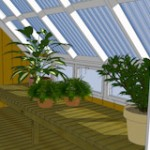 10x12GH-Greenhouse-inside-right