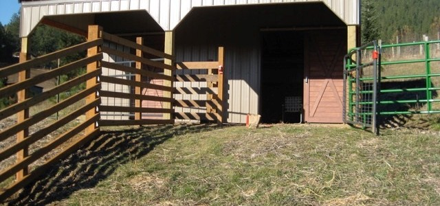22x24 Small 2 stall horse barn plans