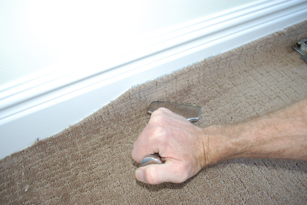 Removing The Padding That Was Not Stuck To Floor Reveals Extent Of Urine Contamination In Flooring Tack Strip And Molding