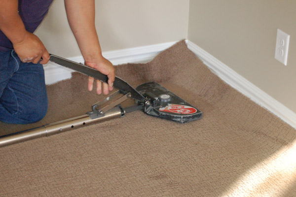 carpet stretching placing stretching end