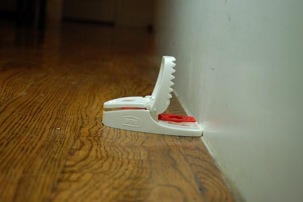 Setting A Mouse Trap
