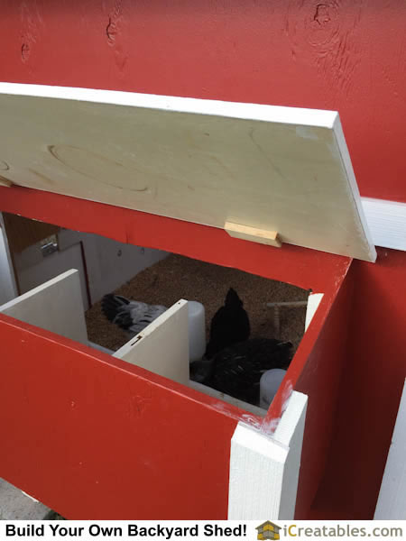 Looking through egg door on chicken coop plans. The chicken egg boxes are inside the egg door.